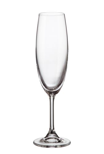 CRYSTALITE BOHEMIA Sklenice SYLVIA na sekt, šampaňské, 220 ml, 1 ks
