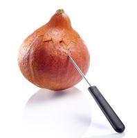 WESTMARK Sada na vyřezávání dýní, melounů 4 ks_0